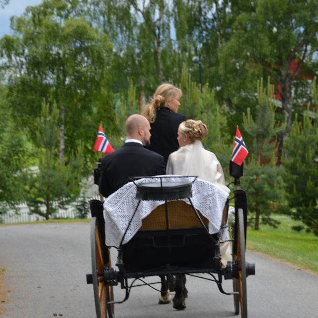 Bride and groom in horse and carriage